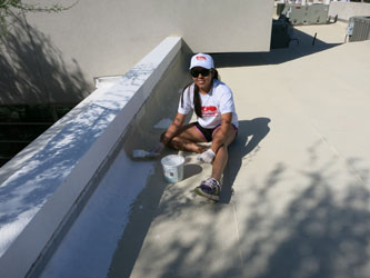 Cool Roofs - Volunteer painting