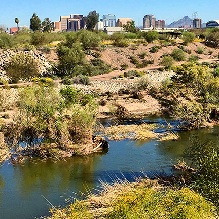 Rio Salado restoration area, south of Downtown Phoenix