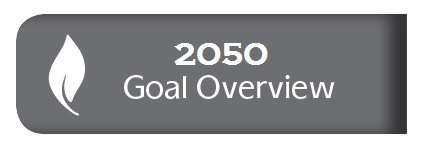 Goal Overview